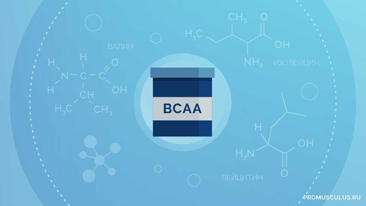 Прием BCAA для набора мышечной массы