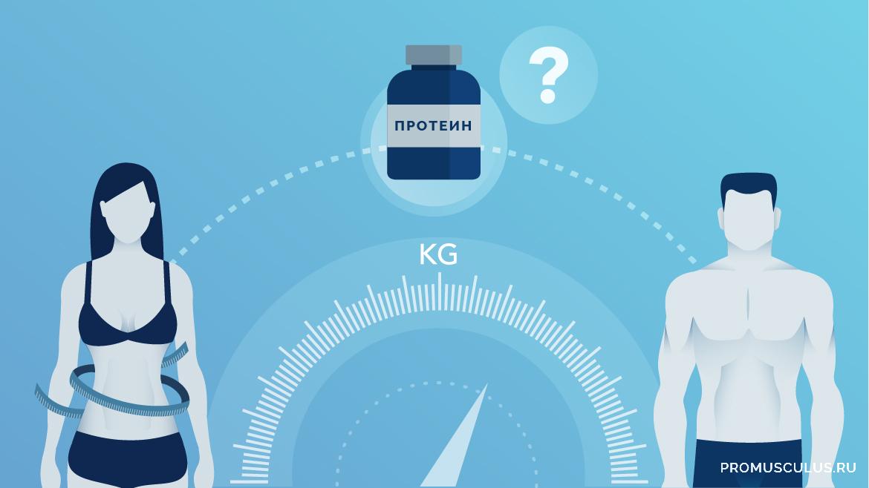 Полезен ли Протеин для похудения девушкам