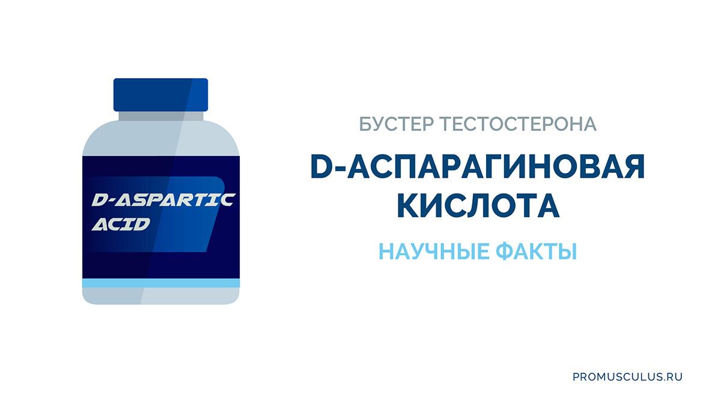 Бустер тестостерона Д-аспарагиновая кислота: отзывы врачей и учёных, как принимать, побочные эффекты