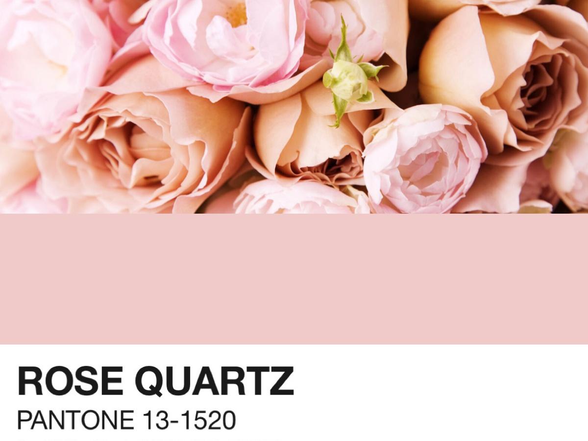 Cor Pantone 2016: inspirações para usar o Rosa Quartzo em casamentos!