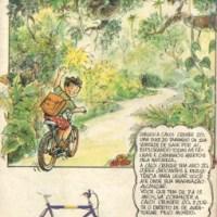 Caloi Cruiser 20 (1989)