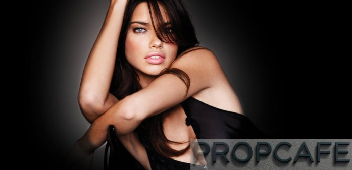 Picture Credit to https://www.victoriassecret.com/vsallaccess/angels/adriana-lima