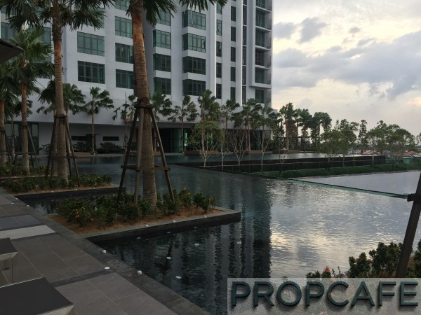 Tropicana_avenue_pool3