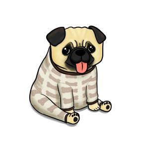 Pug in pyjamas