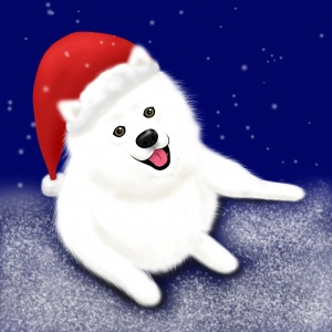 Samoyed in a santa hat