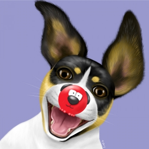 Rat Terrier in a Red Nose v2