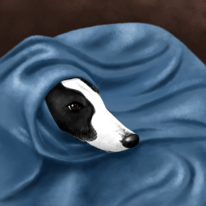 Babushka Dog, greyhound, animal illustration, pet portrait