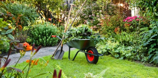 how to clear your garden for a better sale price