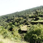 PD0079 – Quinta da Margaraça