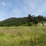 PD0131 – Quinta do Monte Alto
