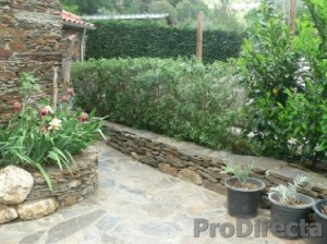 Front Yard leading to Casita
