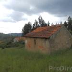 Casinhas da Portela - PD0286