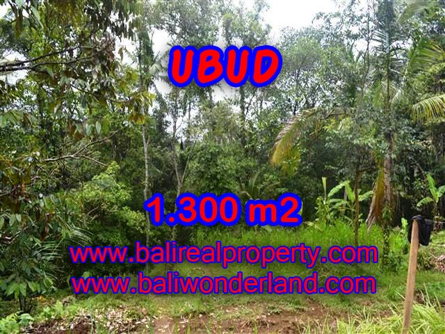 Spectacular Property for sale in Bali, land for sale in Ubud Bali – TJUB362