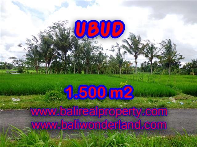 Land in Bali for sale, fantastic view in Ubud Bali – TJUB369