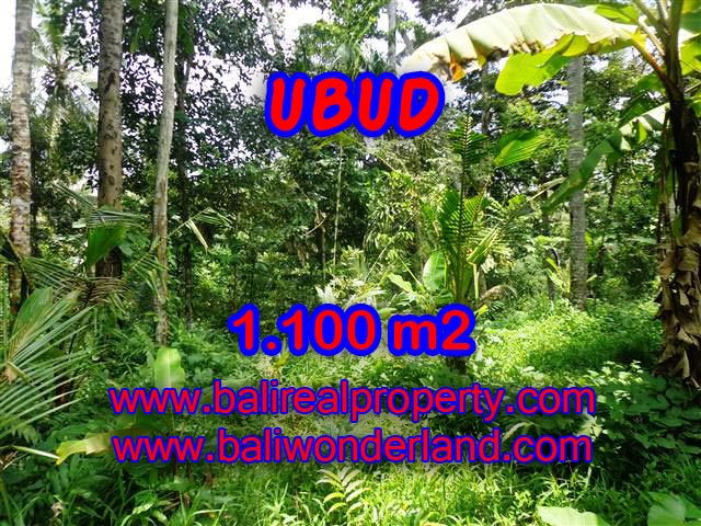Land in Bali for sale, great view in Ubud Bali – TJUB378