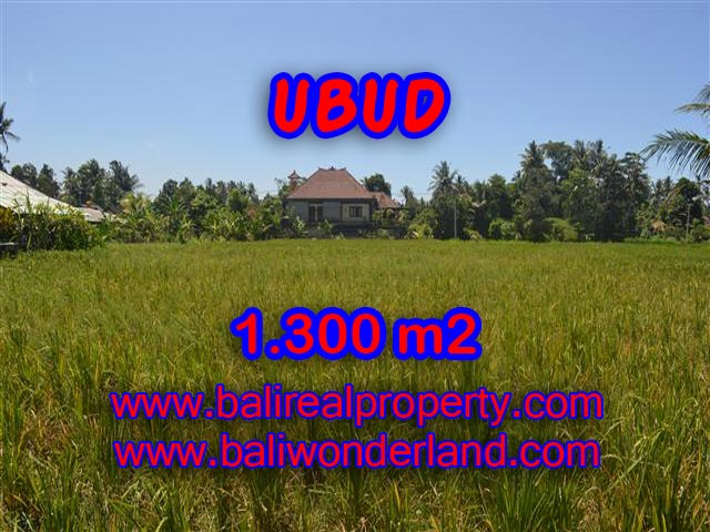 Beautiful Property for sale in Bali, land for sale in Ubud  – TJUB386