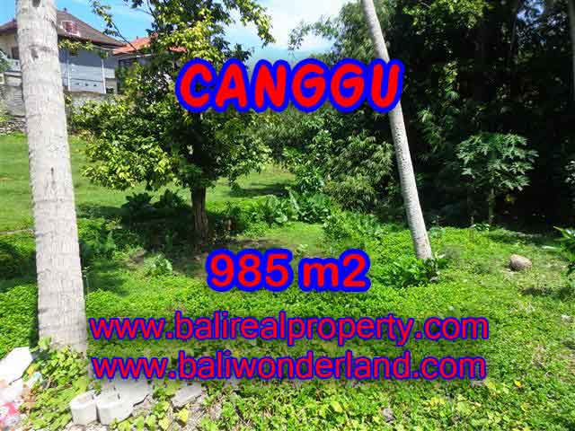 Spectacular Property for sale in Bali, land for sale in Canggu Bali – TJCG147