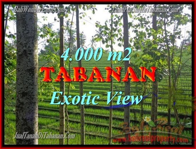 Magnificent Property for sale in Bali, land for sale in Tabanan Bali – TJTB150