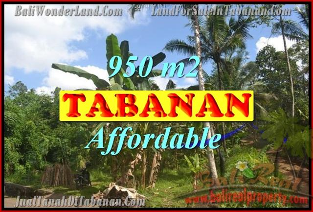 Excellent Property for sale in Bali, land for sale in Tabanan Bali  – TJTB146