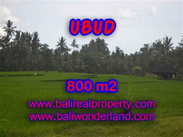 Excellent Property for sale in Bali, land for sale in Ubud Bali – TJUB396