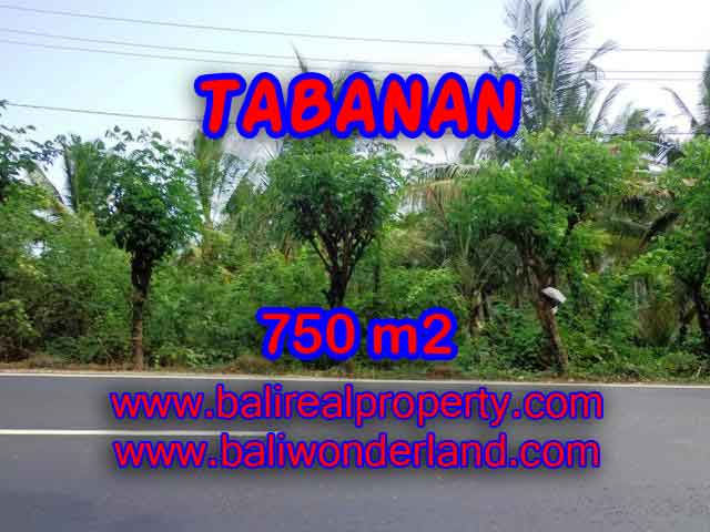 Property in Bali for sale, Astonishing land for sale in Tabanan Bali – TJTB138