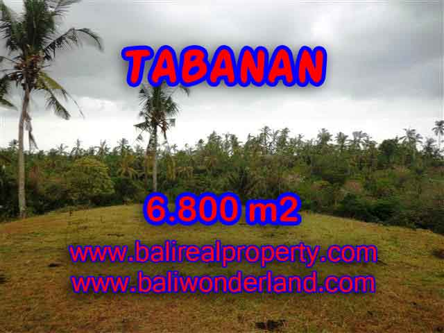 Property sale in Bali, Beautiful land in Tabanan for sale – TJTB140