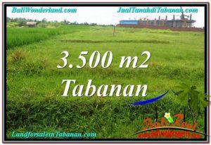 Affordable PROPERTY 3,500 m2 LAND SALE IN TABANAN BALI TJTB302