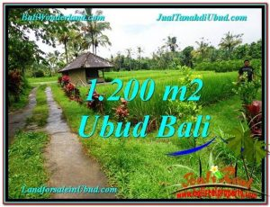 Affordable 1,200 m2 LAND IN UBUD BALI FOR SALE TJUB559