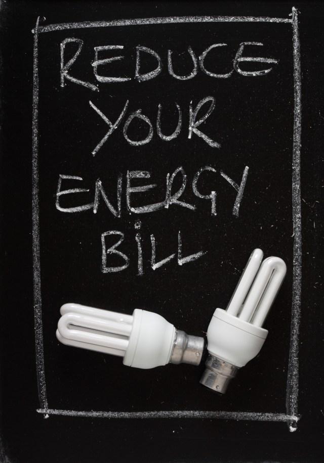 Utility Bill Processing Can Lower Energy Bills