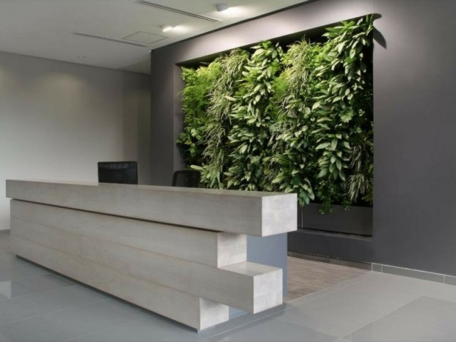 Office Garden Wall Behind Reception Desk