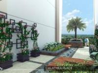 calathea-place-garden-size-small