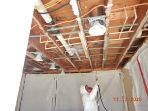 Mold Remediation PPE