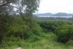 7 Rai at Sea View Land Tong Grud Koh Samui