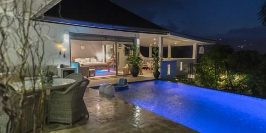 Bophut Sea View Villa or Two Apartments