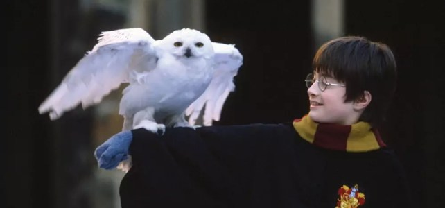 Гарри Поттер на польском (метод Ильи Франка) Гл. 1, ч. 8