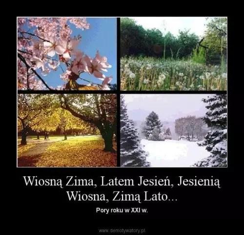 wiosna lato jesien zima po polsku