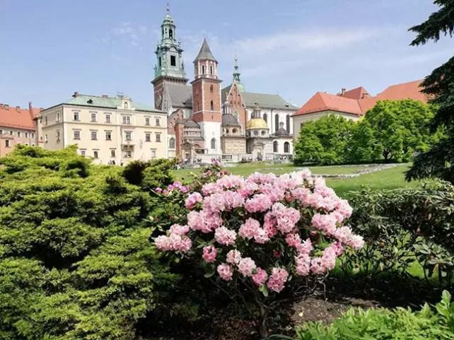 Краковская магия