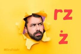 Правописание rz - ż в польском языке
