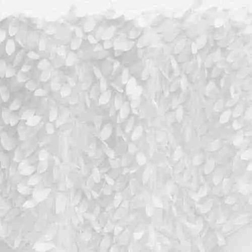 Leaf Petal Backdrop White