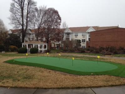 DIY Backyard Green