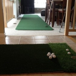 Indoor-Chipping3-resized-image-560x350