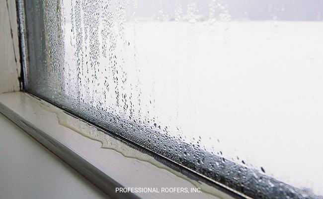 Window Water Damage