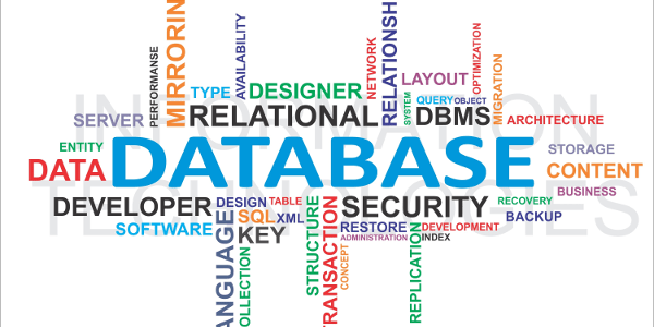 Pros and cons of databases