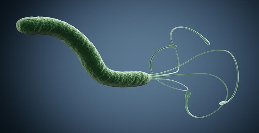 Pros and Cons of H-Pylori