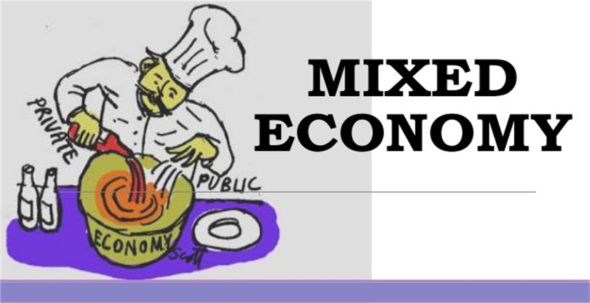 Pros and Cons of Mixed Economy