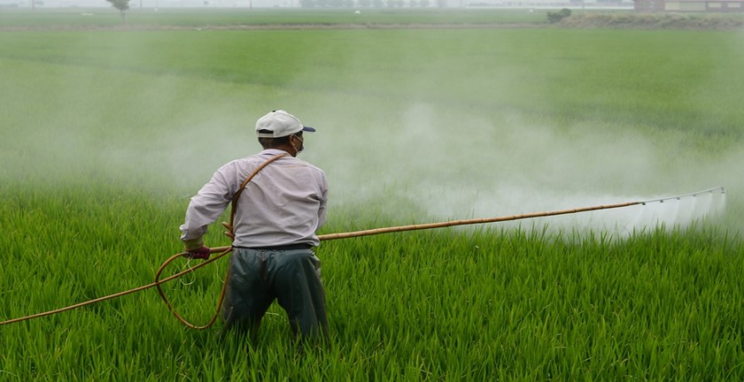 Pros and Cons of Pesticides
