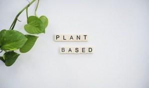Read more about the article Pros and Cons of Plant based diet