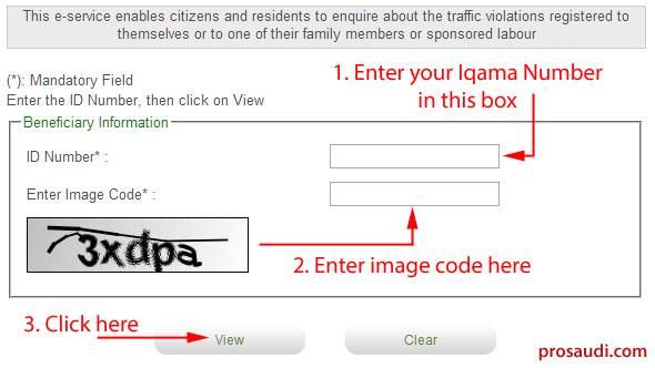MOI - Check Traffic Violation Online