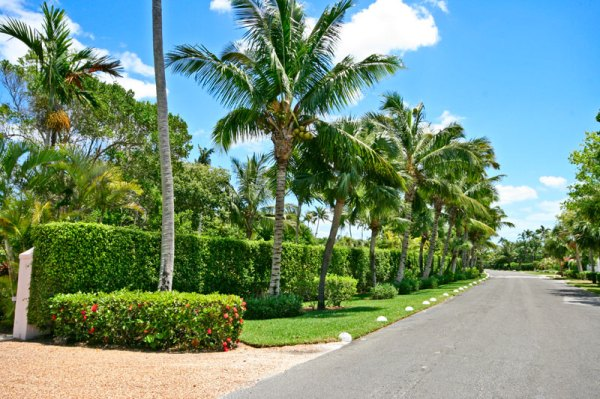 landscape maintenance bahamas