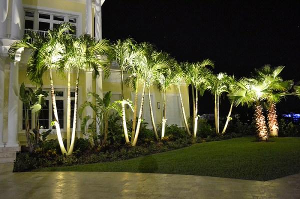 landscape lighting bahamas landscaping